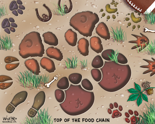 Cartoon: College Football Food Chain (medium) by karlwimer tagged american,football,ncaa,college,alabama,clemson,notre,dame,michigan,florida,jungle,food,chain,texas,footsteps