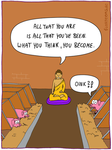 Cartoon: IN THE SHED (medium) by fcartoons tagged religion,pillow,quote,wall,stall,hog,pig,buddha,shed,the,in,schwein,kissen,oink,futter,schweine,hogs