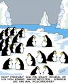 Cartoon: Pinguine (small) by Karsten tagged arktis,globale,erwärmung,tiere,natur