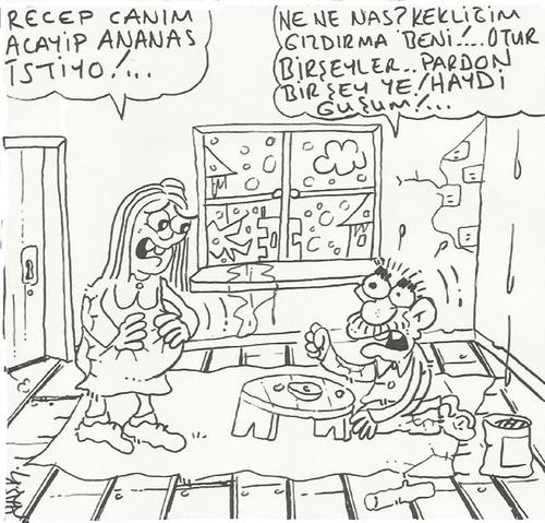 Cartoon: ana bana ananas al (medium) by yasar kemal turan tagged ananas