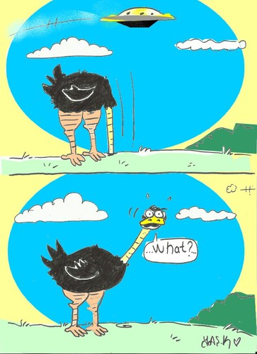 Cartoon: at that moment (medium) by yasar kemal turan tagged ostrich,ufo,moment,that,at