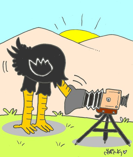 Cartoon: shooting (medium) by yasar kemal turan tagged shooting,camera,ostrich