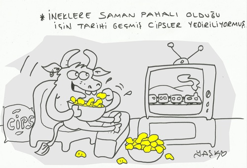 Cartoon: stale chips (medium) by yasar kemal turan tagged nature,ecology,cow,animal,chips,stale