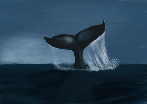 Cartoon: Whale (medium) by alesza tagged blue,ocean,meer,sea,flosse,wal,whale