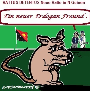 Cartoon: Ein Neuer Erdogan Freund (medium) by cartoonharry tagged ratte,freund,rattusdetentus,erdogan,neuguinea
