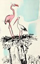 Cartoon: Storks new wife (small) by Kestutis tagged wife,stork,africa,kestutis,lithuania,spring