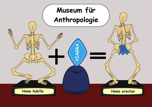 Cartoon: Menschheitsentwickluung (medium) by RiwiToons tagged habilis,sapien,homo,erectus,frühmensch,menschheitsgeschichte,entwicklung