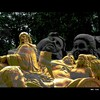 Cartoon: MH - Shot_blended (small) by MoArt Rotterdam tagged shot shotinthechest neergeschoten aanslag zuidlimburg sandsculpture sand zandsculptuur zandsculpturenfestival2010 kasteelhoensbroek hoensbroek zandsculpturenhoensbroek
