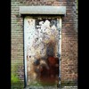 Cartoon: MoArt - The Door 11 (small) by MoArt Rotterdam tagged rotterdam,moart,moartcards,door,deur,verlaten,abandoned,horror,scifi
