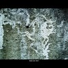 Cartoon: MoArt - The Wall 10 (small) by MoArt Rotterdam tagged tags,rotterdam,moart,moartcards,wall,muur,oud,old,verweerd,rough,dead,dood