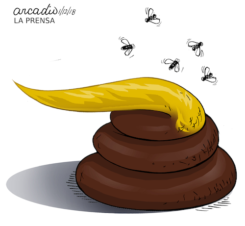 Cartoon: Trump concept of some countries2 (medium) by Cartoonarcadio tagged trump,world,countries,relationships