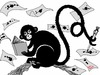Cartoon: Monkeywriter (small) by Roodkapje tagged monkey,writer
