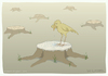 Cartoon: The cry of deforestation (small) by Wilmarx tagged animal,ecology,deforestation,graphics