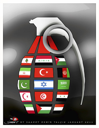 Cartoon: grenade... (medium) by saadet demir yalcin tagged saadet,syalcin,sdy,war,flags,country
