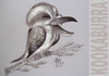 Cartoon: KOOKABURRA (small) by T-BOY tagged kookaburra