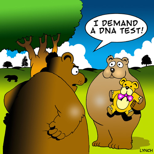 Cartoon: DNA (medium) by toons tagged dna,science,genes,adoption,surrogate,parenthood,bears,teddy,bear,paternal