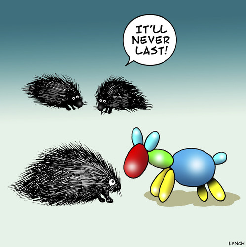Cartoon: Doomed from the start (medium) by toons tagged porcupine,hedgehog,balloon,animals,balloons,porcupine,hedgehog,balloon,animals,balloons