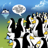 Cartoon: Identity theft cartoon (small) by toons tagged identity,theft,penguind,arctic,penguins,all,look,the,same,fraud,animals