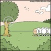 Cartoon: Unravelling (small) by Piero Tonin tagged sheep,wool,animal,animals