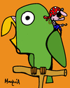 Cartoon: Pirates parrot (small) by Munguia tagged pirate parrot perico pirata munguia costa rica birds cartoon
