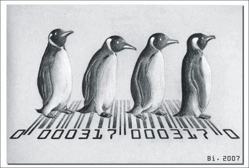 Cartoon: Abbey Road (medium) by Penguin_guy tagged beatles,animals,tiere,pets,pinguine,penguins,pinguine,tiere,vögel,natur,seetaucher,taucher,strichcode,code,barcode