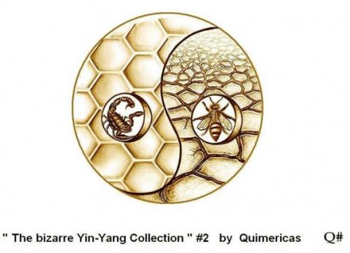 THE BIZARRE YIN YANG COLLECTION