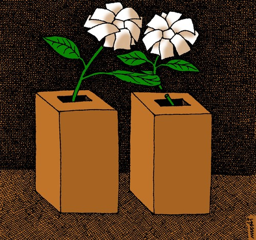 Cartoon: winner of elections (medium) by Medi Belortaja tagged democracy,flower,vote,manipulations,elections