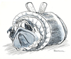 Cartoon: Rollmops (small) by Riemann tagged hund,mops,wortspiel,rollmops,fisch,essen,tier