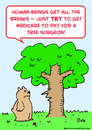 Cartoon: medicare pay tree surgeon (small) by rmay tagged medicare,pay,tree,surgeon